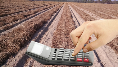 Calculators & Web Apps - Clemson Precision Ag | College of